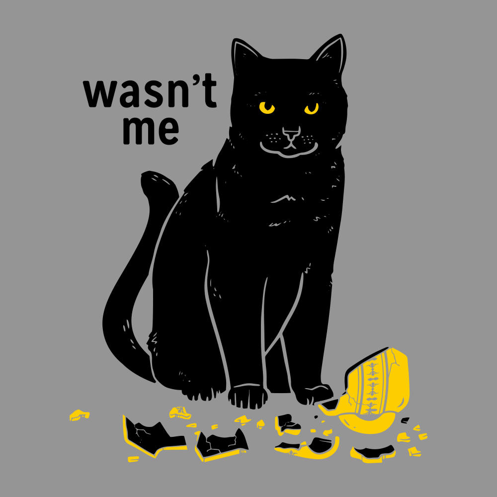 Wasn't Me
